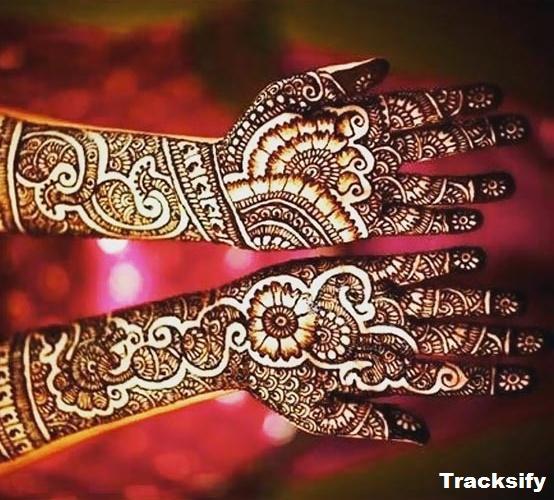 Paisley Mehndi Design