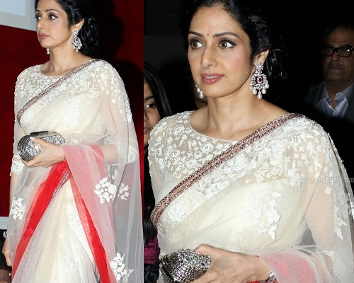 Sridevi in Net Boat Neck Blouse