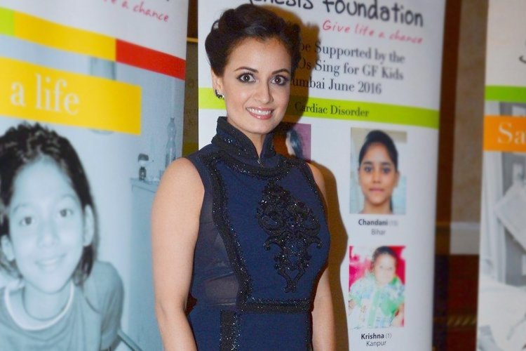 Dia mirza-in-Pankaj-and-Nidhi