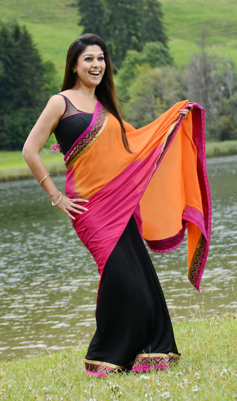Nayanatara in Casual Saree.