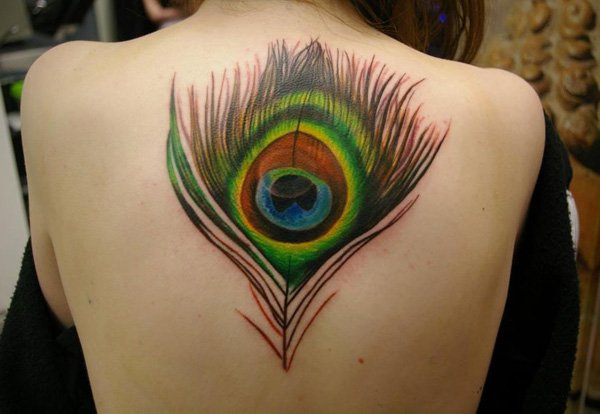 Peacock Feather Tattoo design on woman's back.