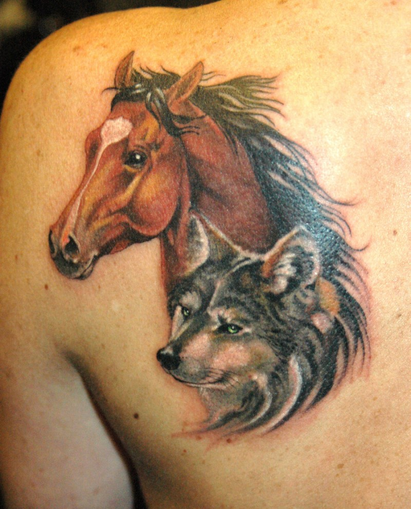Horse Tattoo Designs on the back side.